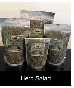 Twin Beaks Aviary Herb Salad