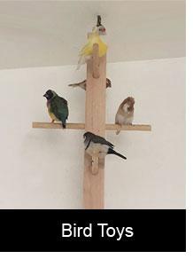 Bird Swing