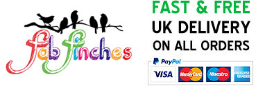 Fab Finches UK