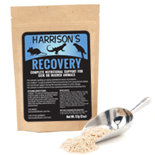 Harrisons Recovery
