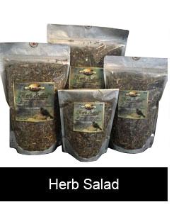 Twin Beaks Aviary Herb Salad